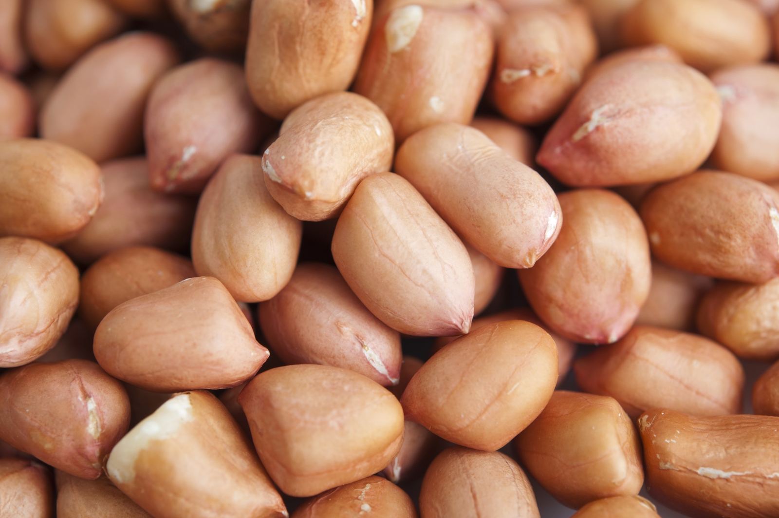 Food Allergy: An Overview